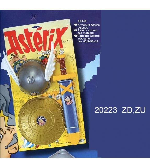 20223